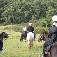 Otford Farm Trail Rides