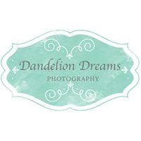 Dandelion Dreams Photography