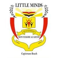 Little Minds Montessori Academy