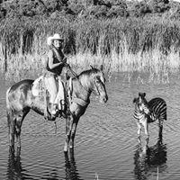 Giddy 'N Up Ranch Camel Rides, Pony rides & Zoo