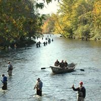 Salmon River New York Fishing Reports