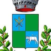 COMUNE DI BONORVA