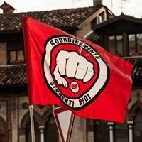 Coordinamento Studenti Medi Treviso