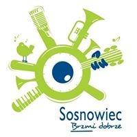 Piszą o Sosnowcu