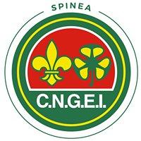 Scout CNGEI Spinea