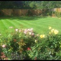 Matthew's Gardening Services Ltd