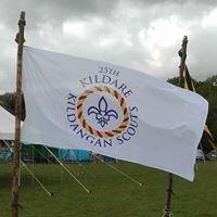 25th Kildangan Scout Group
