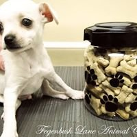 Fegenbush Lane Animal Clinic
