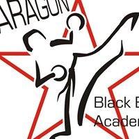 Paragon Black Belt Academy