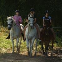 Edgecumbe Pony Club