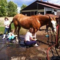 Heather's Horsemanship and Riding School