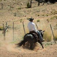 Boyd Ranch, LLC
