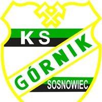 "Sekcja pływacka KS""Górnik""Sosnowiec"