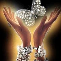 Butterfly Healing Effect