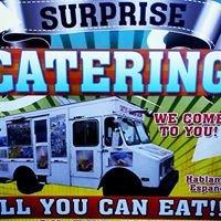 Surprise Catering Ice Cream