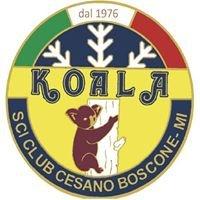 Sci Club Koala