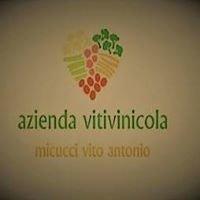 Azienda Vitivinicola MICUCCI Vito Antonio