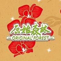 Original Forest 原始森林