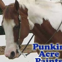 Punkin Acre Paints