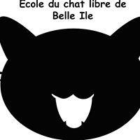 Ecole du Chat LIbre de Belle-Ile en Mer