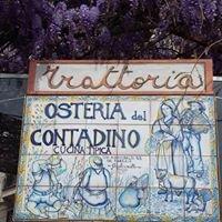 OSTERIA DEL CONTADINO