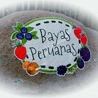 Bayas  Peruanas
