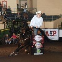 Good Time Performance Horses