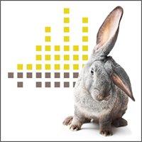 Clinique Auditive Bougie, audioprothésistes