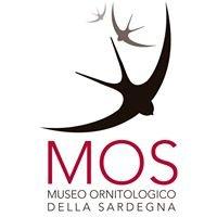 Museo Ornitologico Della Sardegna