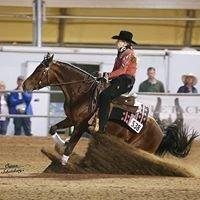 Dusty Morgan Performance Horses