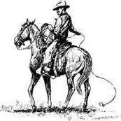 FRC Production Horse Sale