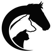 Animals First - Dr. Lori Blankenship -  Holistic Veterinary Service