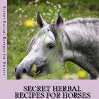Holistic Horse Therapies