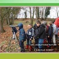 """Animations pour """"apprendre"""" la nature - Mairie Marcillé-Robert"""