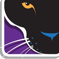 Perk Panther