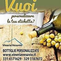 www.vineriavesuvio.it