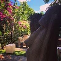 Aztekum Lounge-Out Garden