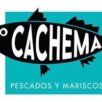Cachema