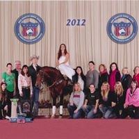 Buckeye Performance Horses