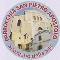 Parrocchia San Pietro Apostolo - Spezzano della Sila
