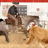 R S Performance Horses