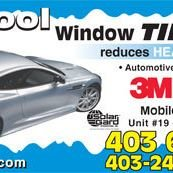 Window Tinting and 3M Paint Protection