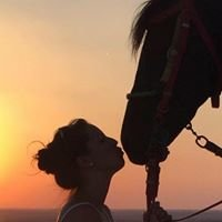 Marhaba Horse Stable