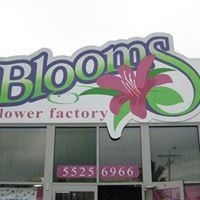 Blooms Flower Factory