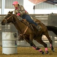 KG Horse Training & Breeding