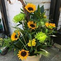 Helgaz Flowers