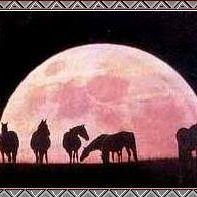 Full Moon Ranch