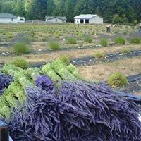Montevista Medicinal Herb Farm