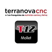 Terranovacnc12 - Mollet