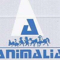 Clínica Veterinaria Animalia